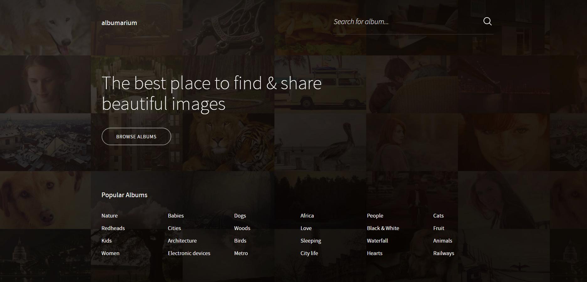 albumarium, jogtiszta fotók, ingyenes fotók, jogtiszta képek, ingyenes képek, ingyenes png ábrák, ingyenes háttérképek, ingyenes logó